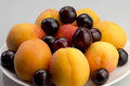 Apricots and cherries Royalty Free Stock Photo