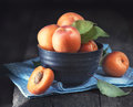 Apricots. Closeup of fresh organic apricot fruits in a bowl Royalty Free Stock Photo