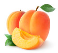 Apricots fresh over white background Stock Image