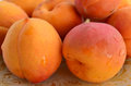 Apricots fresh ripe with water drops on oilcloth Royalty Free Stock Photography