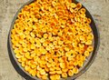 Apricots in half in the sun for dried apricots. a lot of dried apricots in a large plate in the sun