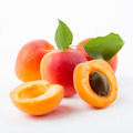 Apricots with leaves Royalty Free Stock Photo