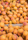 Apricots on sale as summer fruit Stock Photo