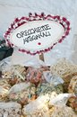 Apulian orecchiette handicraft product Royalty Free Stock Photo