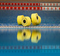 Aqua aerobics dumbbells reflected in water Royalty Free Stock Photo