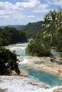 Aqua azul mexico in chiapis waterfall with jungle in background Stock Photography