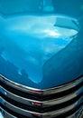 Aqua Classic Car Hood Royalty Free Stock Photo
