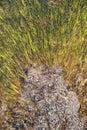 Aqua Marine colors in Geyser Royalty Free Stock Photo