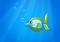 An aqua marine fish Royalty Free Stock Photo
