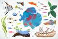 Aquarium fish, seaweed underwater seamless pattern vector illustration