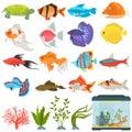 Aquarium flora and fauna color flat icons set Royalty Free Stock Photo