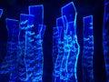 Aquarium Lighting - Thousands Blue Fishes' Swimming Royalty Free Stock Photo