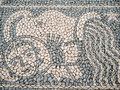 Aquarius figure stone pavement with zodiac design Stock Image