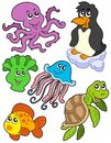 Aquatic animals collection 2 Stock Images