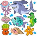 Aquatic animals collection Royalty Free Stock Photo