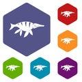 Aquatic dinosaur icons set hexagon
