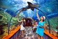Aquatic tunnel in the loro parque tenerife aquarium on july spain aquarium consists of twelve themed exhibits Stock Images