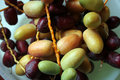 Arabian dates Royalty Free Stock Photo