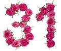 Arabic numeral 31, thirty one, from red flowers of rose, isolate