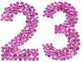 Arabic numeral 23, twenty three, from flowers of lilac, isolated Royalty Free Stock Photo