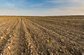Arable land agricultural under the blue sky Stock Images