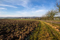 Arable land and blue sky Stock Image