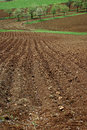 Arable land the furrows in the field of ready for spring planting Stock Photography