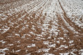 Arable land under snow Royalty Free Stock Photography