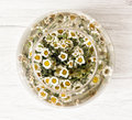 Arangement with daisy flowers in the glass bowl with water Royalty Free Stock Photo