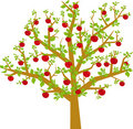 Arbol frutas (vector) Royalty Free Stock Photography