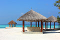 Arbor on maldives beach the beautiful at Royalty Free Stock Image