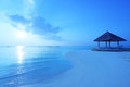 Arbor on maldives beach the in the sunrise Royalty Free Stock Image