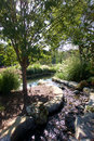 Arboretum Stream And Pond