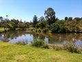 Arboretum szczegół z jeziorem Obraz Stock