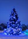Arbre avec des lumières de Noël dans le bleu Photographie stock