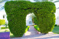 Arch made of trimmed bushes Royalty Free Stock Photography