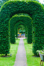Arch of topiary Stock Photos