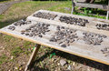 Archaeological objects found during excavations at the troitskiy excavation in veliky novgorod Stock Photography
