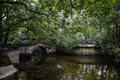 Arched stone bridge in pond of verdant summer an the chengdu china Royalty Free Stock Photo