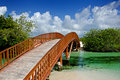 Arched Wooden Bridge Royalty Free Stock Photos