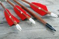 Archery arrows wooden with plastic nocks steel points and natural feathers closeup Royalty Free Stock Photography