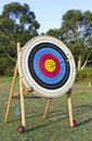 Archery Shooting Target Royalty Free Stock Photo