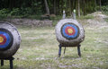 """Archery target on the field light and flare effect added mean """"choose your goal targeted"""" """"success life goals"""" Royalty Free Stock Photo"""