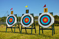 Archery targets official centimeters Royalty Free Stock Image