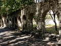 Arches in the Grounds of the Mon Repose Palace on the Greek Island of Corfu Royalty Free Stock Photo