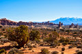 Arches national park in the state and utah united states Royalty Free Stock Images