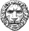 Architectural decoration vector drawing of the detail in form of the lions head Royalty Free Stock Images