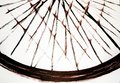 The architectural harmony of the spokes of the bicycle wheel