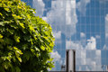 Architecture of kiev green trees in the background mirror building Royalty Free Stock Photos