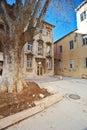 Architecture of Zadar, Croatia Royalty Free Stock Image